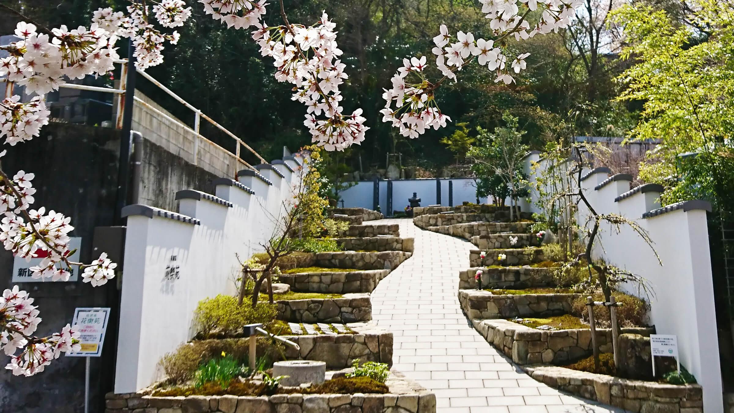 花樂苑の写真
