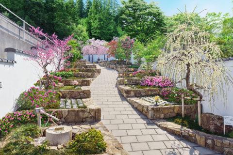 花樂園の写真
