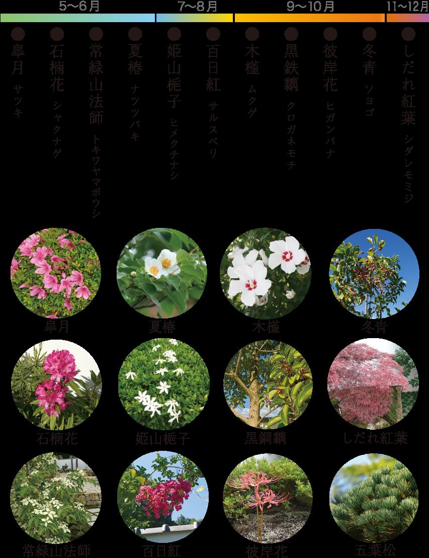 お花のカレンダー